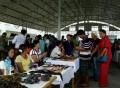 缅甸琥珀走私猖獗势头应予遏制