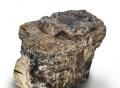 新加坡琥珀收藏家收集的琥珀原石重达50公斤