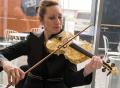 (国际)琥珀提琴